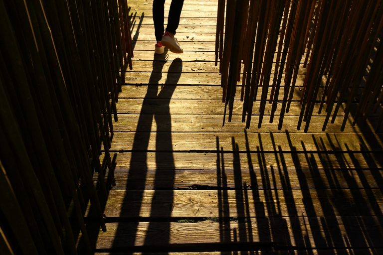 012C-Labyrinthe-Bambous-Divertiparc