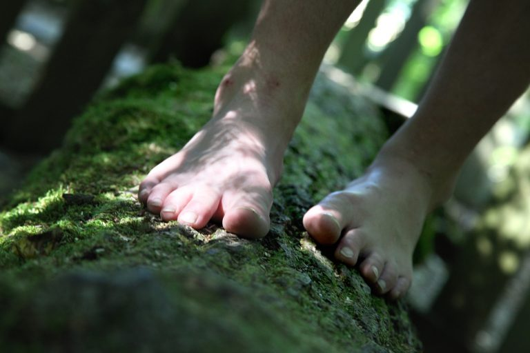 023A-Labyrinthe-Sentier-pieds-nus-Divertiparc-Rebecca-Pinos