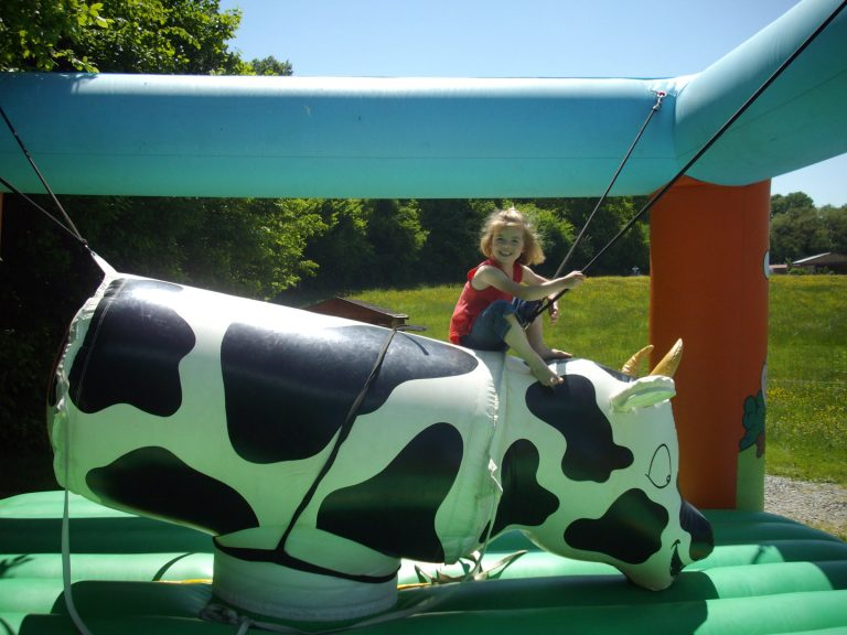 08-Rodeo-vache-DivertiParc